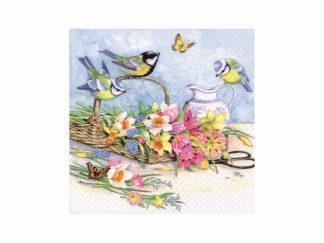 Servett Vårfåglar